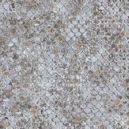 Roberto Cavalli Scale Wallpaper