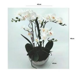 White Real Touch Orchid Flower in Display Chrome Pot