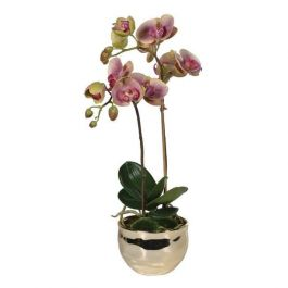 Dusty Pink and Green Orchid Plant in Gold Pot