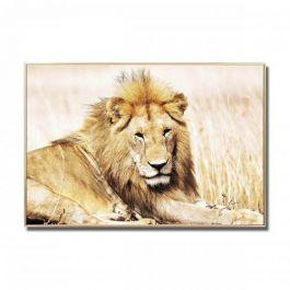 Lion Glass Wall Art