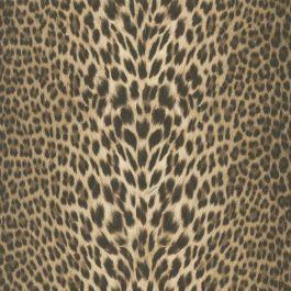 Roberto Cavalli Leopard Wallpaper